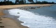 ชายหาดนราทัศน์