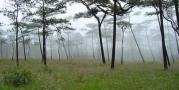 อุทยานแห่งชาติภูสอยดาว