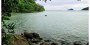 เกาะไม้ชี้